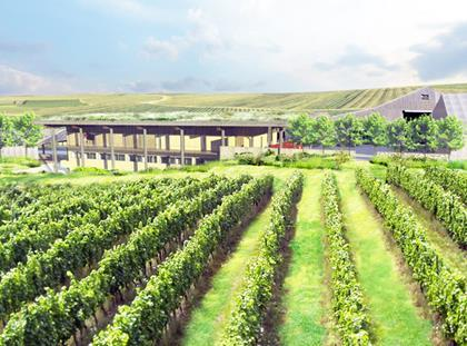 Work begins on giant Rathfinny Estate eco winery
