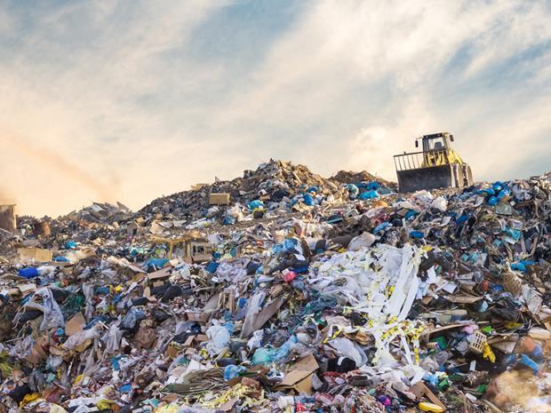 Landfill food waste