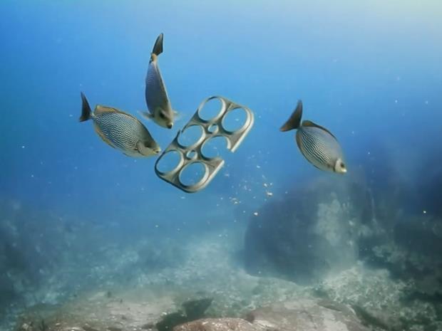 unusual fish food